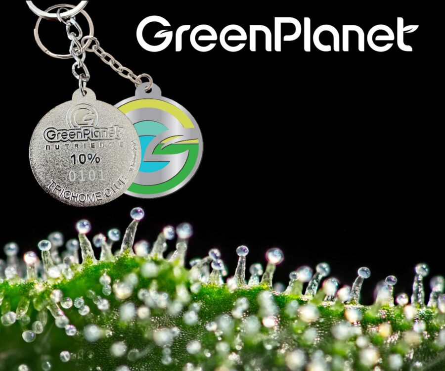 Green Planet Banners